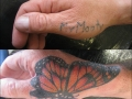 cover up butterfly